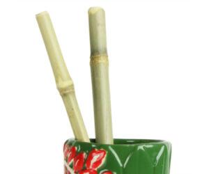 Bambusz szívószál 25 cm 1 db